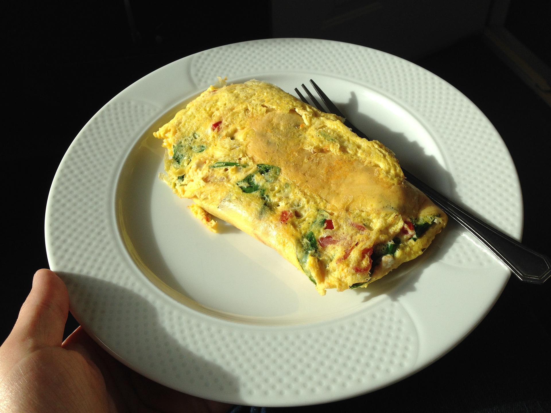 NutriKate Omelette